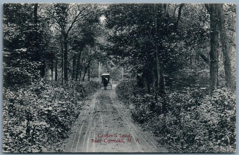 CORNWALL NY CAESER'S LANE ANTIQUE POSTCARD