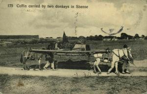 china, Coffin carried by Two Donkeys in Shense (1910s) Postcard