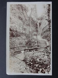 Isle of Wight SHANKLIN CHINE - Old RP by F.N. Broderick of Ryde (2)