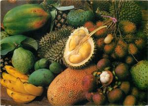 Malaysian fruits Malaysia postcard
