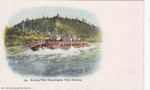 Shooting White Horse Rapids , Y.T. , Canada , Pre-1907