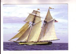Tall Ship 2000 Race, Pride of Baltimore II, Halifax, Nova Scotia, Chronicle H...