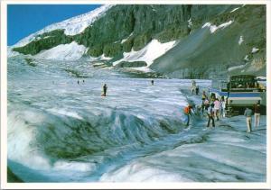 Giant Snowcoach Athabasca Glacier Columbia Icefield Alberta AB Postcard D37