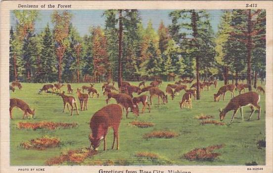 Denizens Of The Forest Greetings From Rose City Michigan 1946
