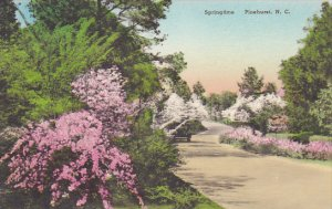North Carolina Pinehurst Springtime Handcolored Albertype