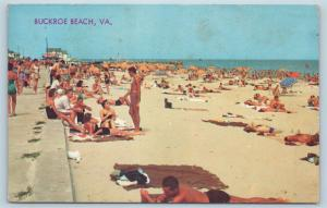 Postcard VA Buckroe Beach View of Beach Bathers Boardwalk c1950s N4