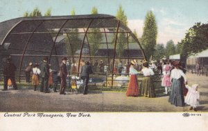 Central Park Menagerie Posted From New York City Station Postcard