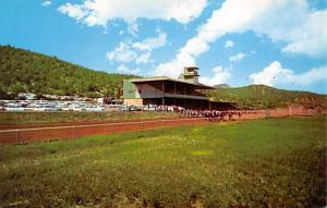 Ruidoso, New Mexico, USA Race Track Horse Racing Postcard unused
