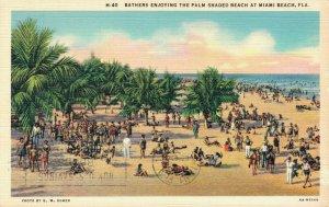 USA - Florida Miami Beach Bathers enjoying the Palm Shaded Beach 04.29