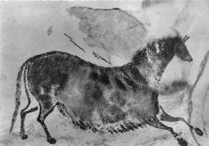 BF40728 cheval  montignac sur vezere lascaux peinture rupestre cave painting