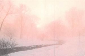 Northern Light -