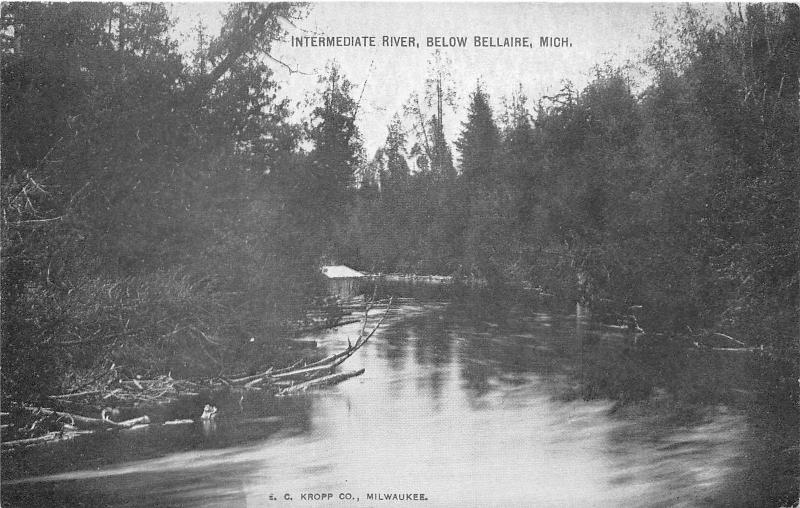 Bellaire Michigan~Intermediate River Scene in Forest~c1910 Postcard
