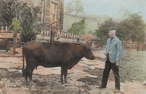 RP: EXTWISTLE MILL , Lancashire , England , 00-10s ; Man & cow , OLD TAT (R...