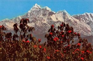 India Kanchan Changa Mountains Berg