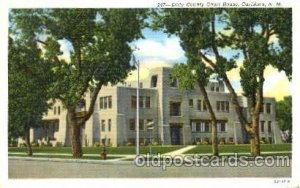 Carlsbad, New Mexico USA Eddy County Court House Unused light wear, Unused