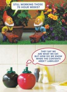 Food Labelling Garden Gnomes European Election Campaign Postcard s