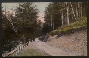 Drive in Ross Park, Binghamton, N.Y. 1914 Walter R. Miller & Co.