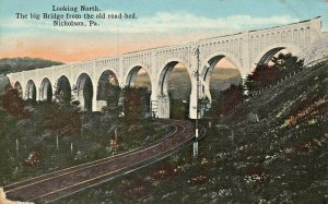 NICHOLSON PA~BIG BRIDGE FROM THE OLD ROAD BED-DIXOGRAPH 1910s POSTCARD