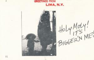 Greetings from Lima NY, New York - Fish is Bigger than Me - Village Print Humor