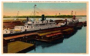 Virginia Norfolk M.M Steamships and Pier