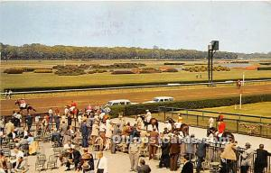 Belmont Park, Belmont's Flower and Lake Long Island, NY, USA Horse Racing 195...