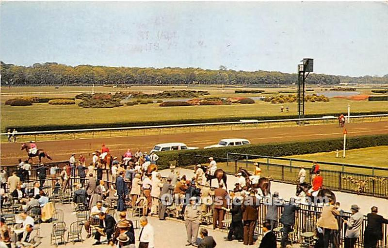 Long Island, New York, NY, USA Horse Racing Postcard Belmont Park looking to...