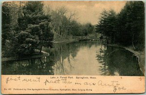 Springfield, Massachusetts Postcard Lake in Forest Park w/ 1905 MA Cancel