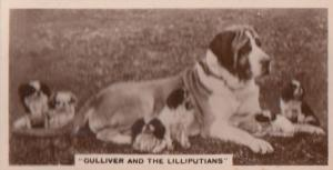 Gulliver & The Lilliputlians Dog Antique German Real Photo Cigarette Card