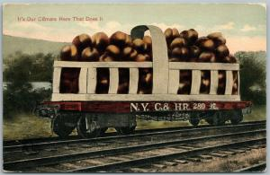 CARLOAD OF APRICOTS EXAGGERATED ANTIQUE POSTCARD OUR CLIMATE DOES IT railroad