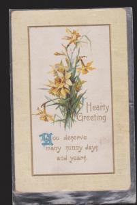 General Greetings - Hearty Greetings Flowers - Used 1912 - Embossed