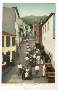Madeira, Portugal, 00-10s Caminho do Monte