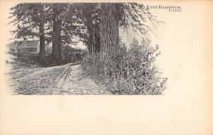 East Hampton Connecticut Lake Drive Scenic View Antique Postcard K101933