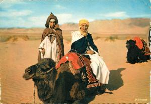 Tunisian ethnic types camel
