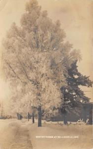 Bellevue Iowa~Winter Residential Street Scene~Snow on Tree~1910 RPPC