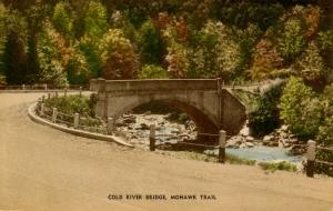 MA - Berkshires, Mohawk Trail. Cold River Bridge