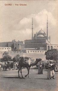 Egypt Cairo Citadel Camel Carriages