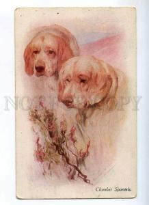 234728 CLUMBER SPANIEL Dogs HUNT Vintage NOVITAS #42316 PC