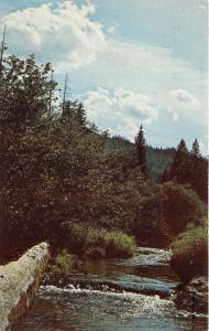 St Maries Idaho~Carpenter Creek in Wilderness~Timberline Advertisement Bk~1950s