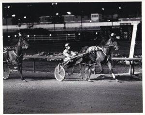 SPORTSMAN'S PARK, Harness Horse Race, STEPATUNE winner