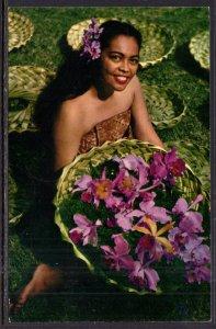 Island Orchids,Flowers,HI