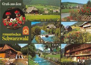 Gruss aus dem romantischen Schwarzwald multiviews Muhle Mill Creek House