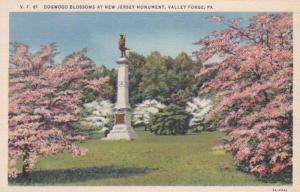 Pennsylvania Valley Forge Dogwood Blossoms At New Jersey Monument Curteich