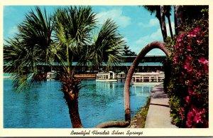 Florida Silver Springs Horseshoe Palm & Glass Bottom Boats