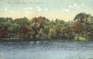 Picnic Grounds, Altyon Park Pitman NJ 1907