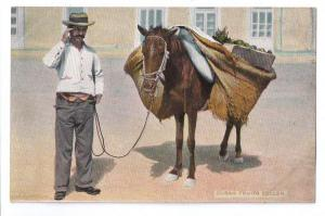 Cuba Fruit Seller ca 1910