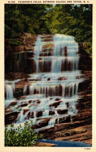 North Carolina Pearson's Falls Between Saluda and Tryon