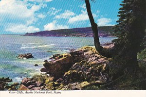 Otter Cliffs Acadia National Park Maine