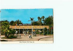 Vintage Postcard San Diego Zoo Elephant Flamingos elephant  San Diego  CA # 3435