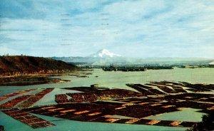 Washington Mount Rainier From Tacoma 1957