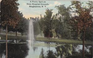 Pretty Spot , State Hospital grounds , BINGHAMTON , New York , PU-1911